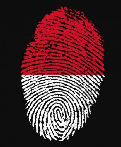 Pengertian, Fungsi, Hakikat dan Unsur Identitas Nasional Beserta Contohnya