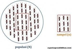 Pengertian Populasi Dan Sampel Serta Teknik Sampling