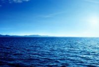 Jenis dan Manfaat Laut