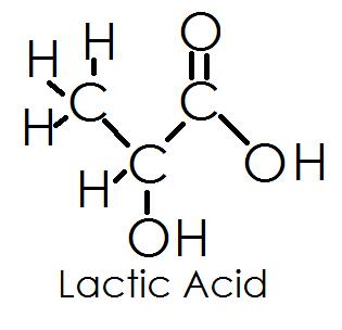 Pengertian Asam Laktat dan Rumus Kimia Asam Laktat