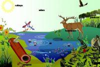 5 Pengertian Ekosistem Menurut Para Ahli