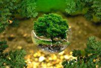 13 Pengertian Lingkungan Menurut Para Ahli