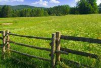 Contoh dan Cara Membuat Surat Perjanjian Jual Beli Tanah
