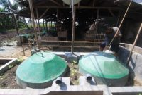 Cara Membuat Biogas Dari Kotoran Sapi dan Manfaatnya
