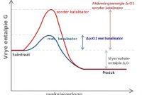Pengertian, Fungsi dan Contoh Katalis (Katalisator) Beserta Sifat Enzim Sebagai Biokatalisator