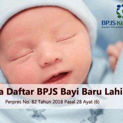daftar BPJS Kesehatan untuk bayi baru lahir