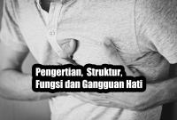 Pengertian, Struktur, Fungsi dan Gangguan Hati